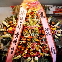 축하5단(원천가250,000)