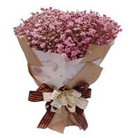 칼라안개(핑크)꽃다발2~3일전 미리주문 010-5046-5595